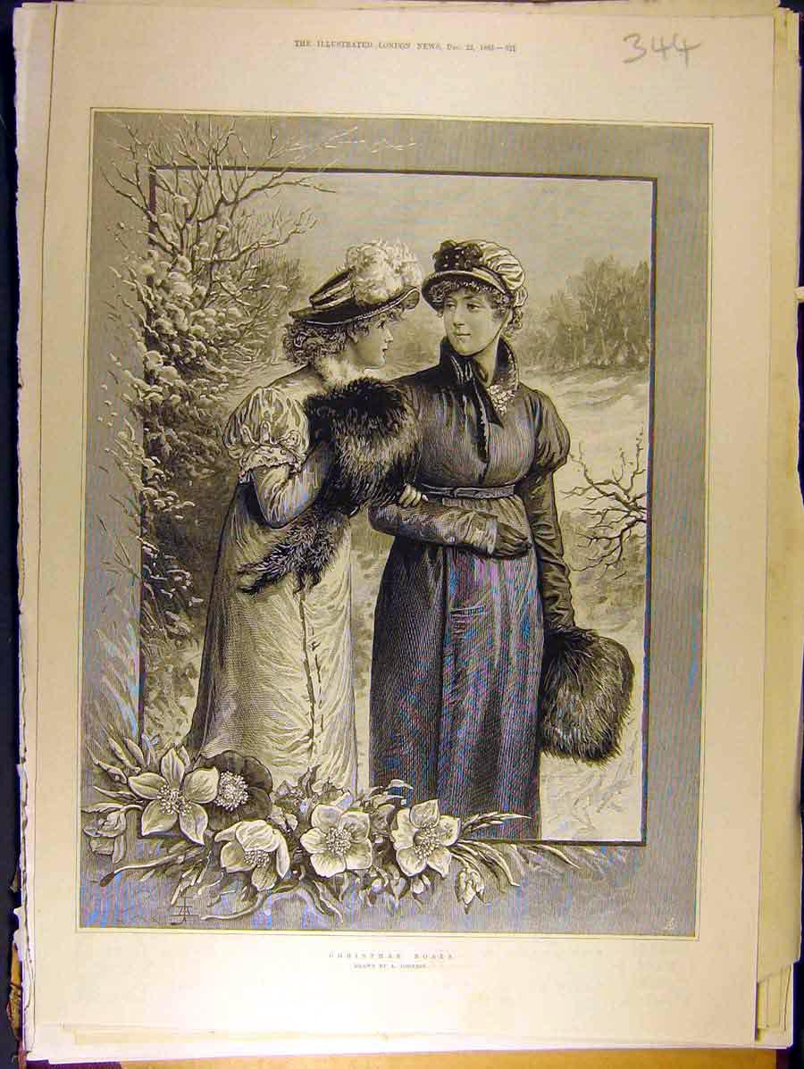 Print 1883 Christmas Roses Johnson Ladies Flowers Xmas 448771 Old Original