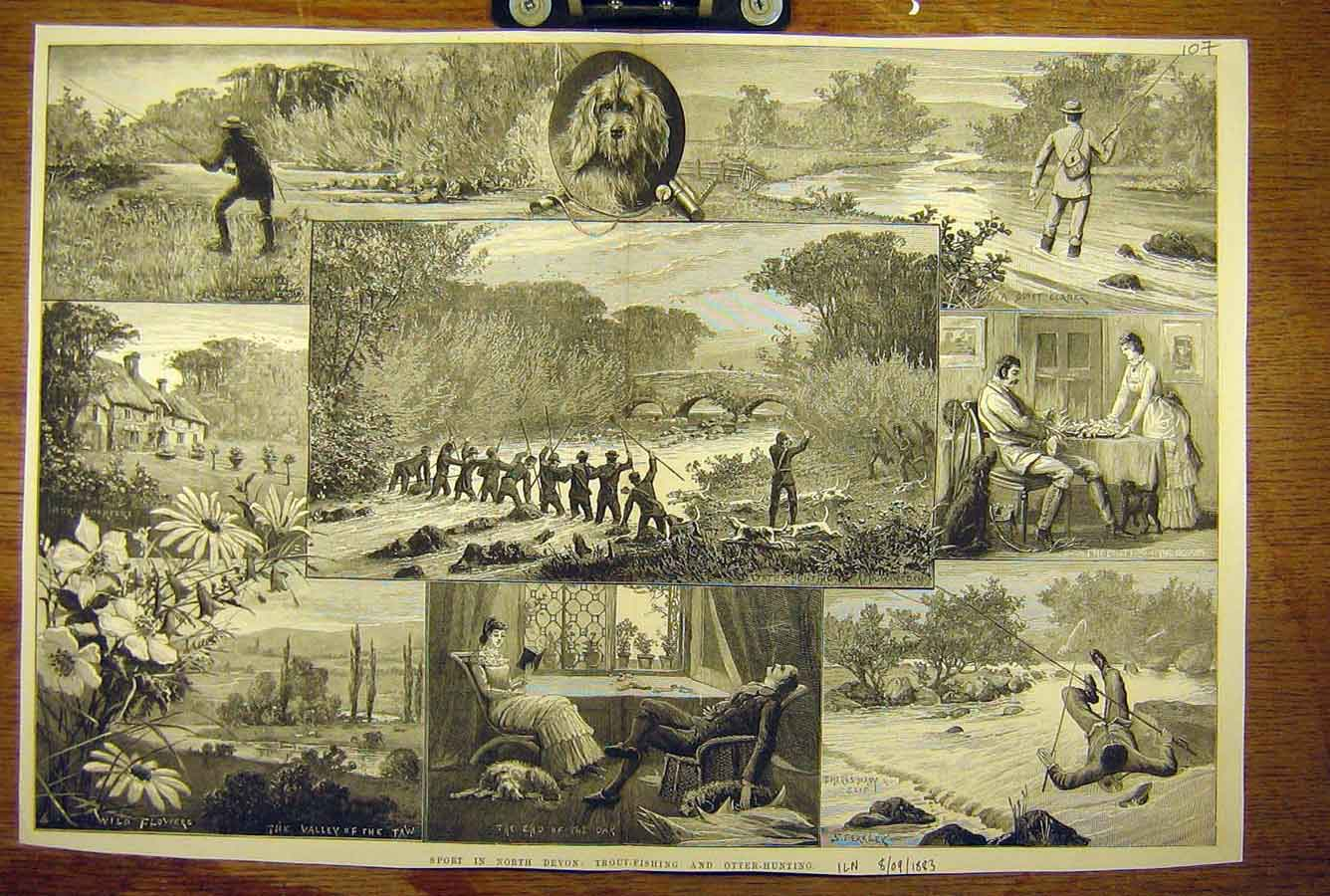 Print 1883 Trout-Fishing Otter-Hunting North-Devon Sketches 07T8781 Old Original