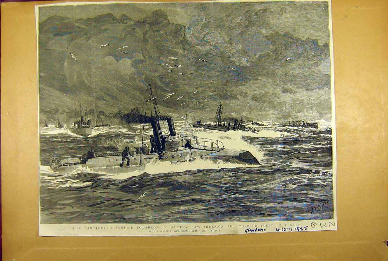 Print 1885 Bantry Bay Ireland Torpedo Fleet Service Squadron 368781 Old Original