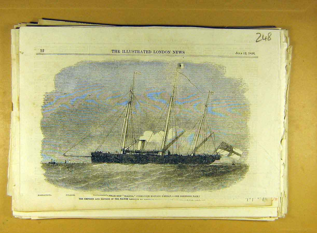 Print 1856 Steam-Ship Seagull O'Reilly Commander Naval 488791 Old Original