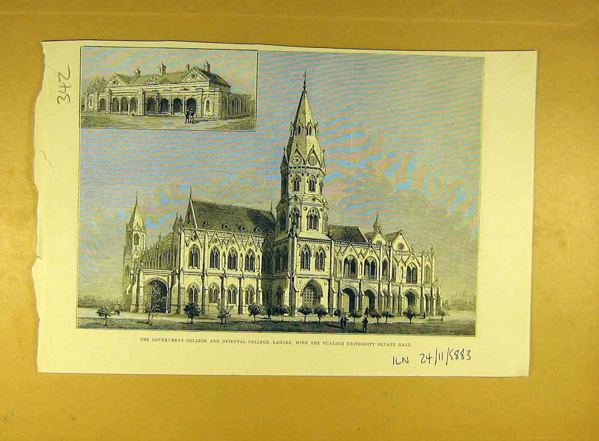Print 1883 Government College Oriental Lahore Punjaub Senate 428791 Old Original