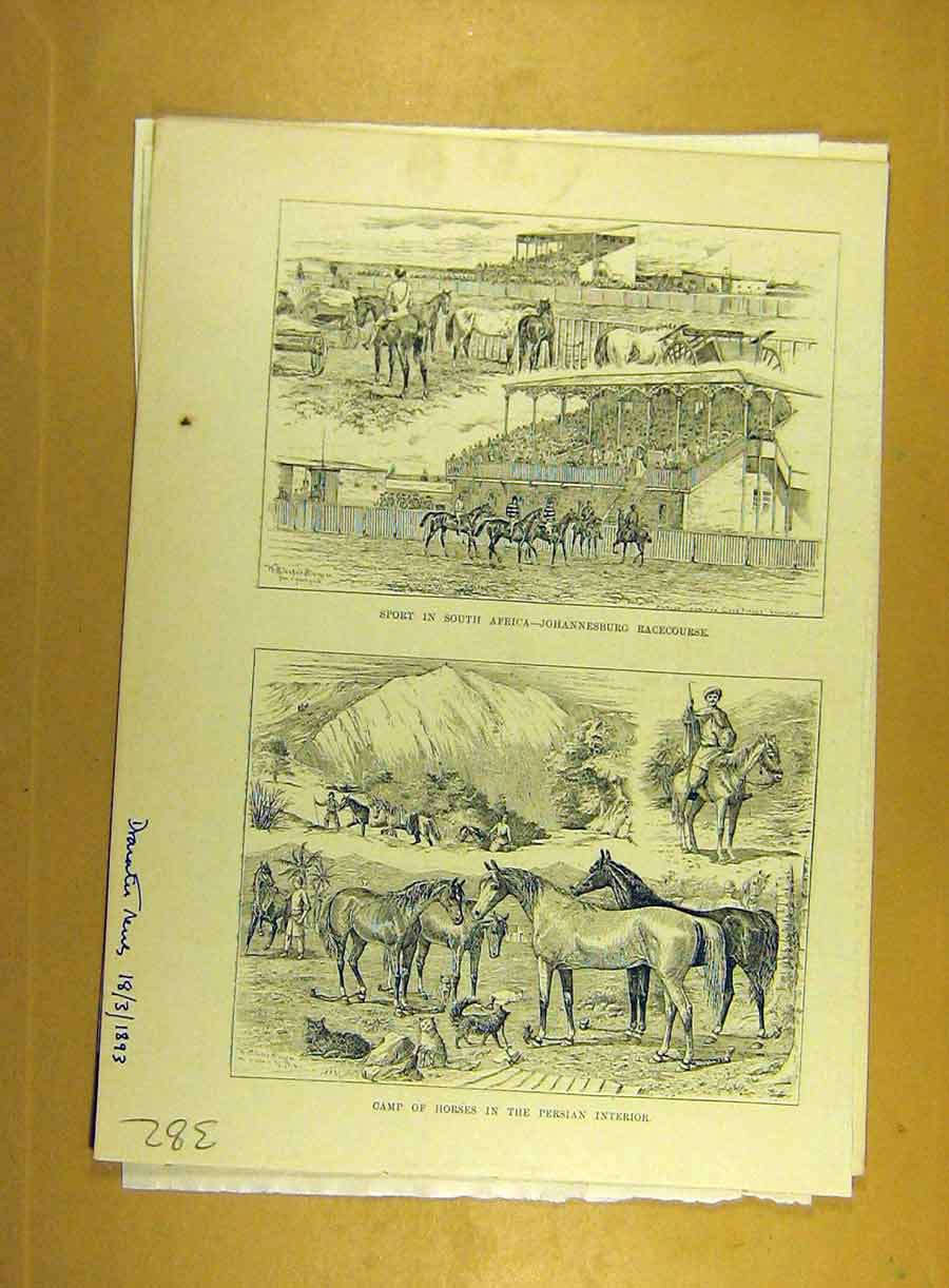 [Print 1893 Camp Horses Persia Sport Africa Horse-Race-Course 828791 Old Original]