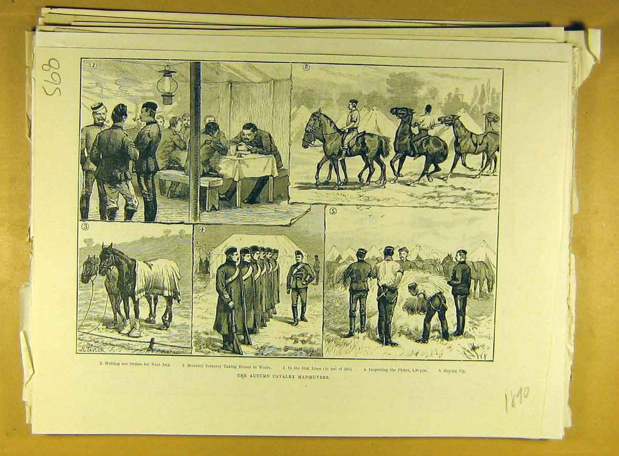 Print 1890 Autumn Cavalry Manoeuvres Military Infantry Horse 688791 Old Original