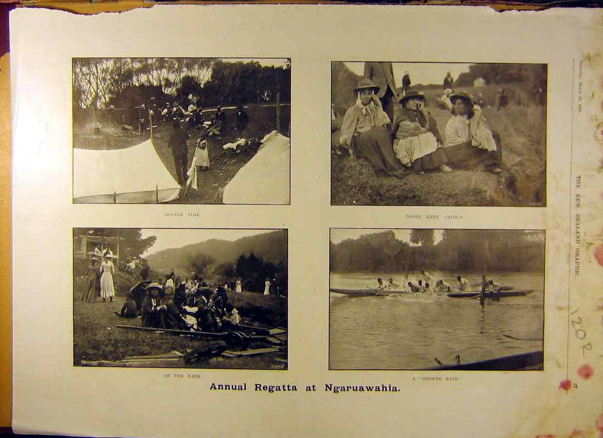 Print 1904 Ragatta Ngaruawahia New-Zealand Canoe Race 20R8831 Old Original
