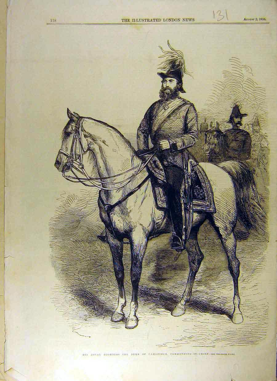 Print 1856 Duke Cambridge Royal Horse Mount Equine 318831 Old Original