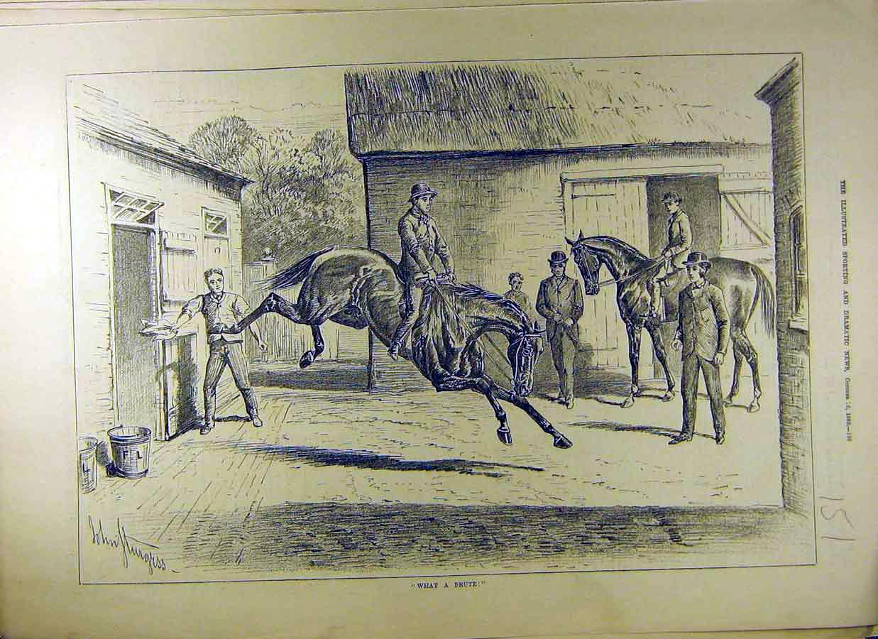 Print 1880 Equine Stable Horse Brute Yard Ride 518831 Old Original
