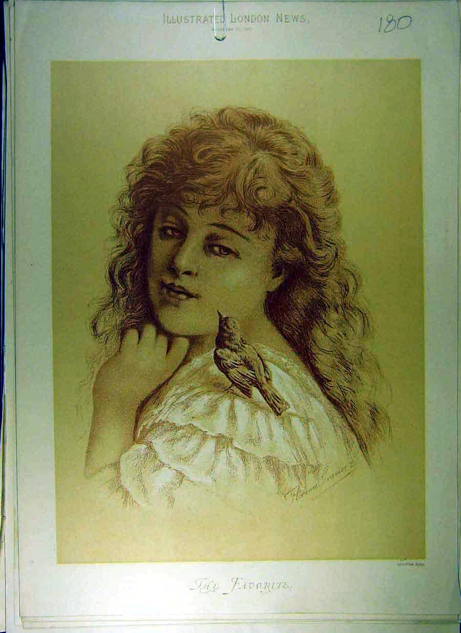 Print 1887 Drawing Girl Portrait Bird Favourite Gravier 808831 Old Original