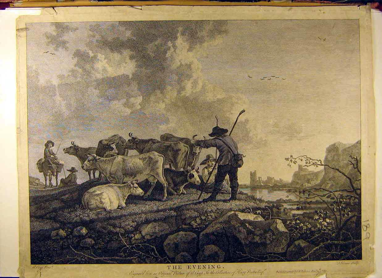 Print Painting Penton The Evening Cattle Herd Farmer 898831 Old Original