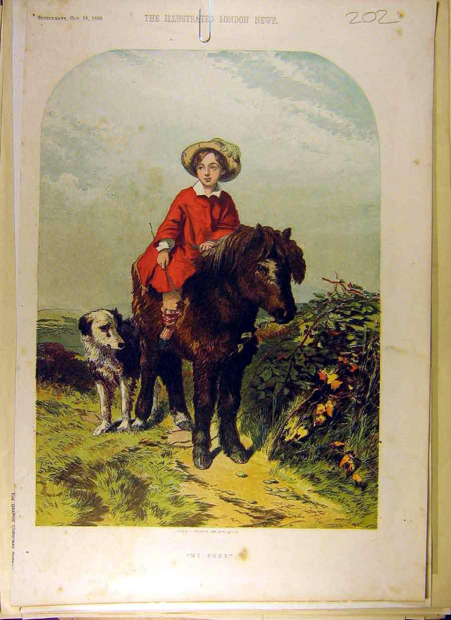 Print 1856 Painting Animal My Pony Dog Boy Hill 028831 Old Original