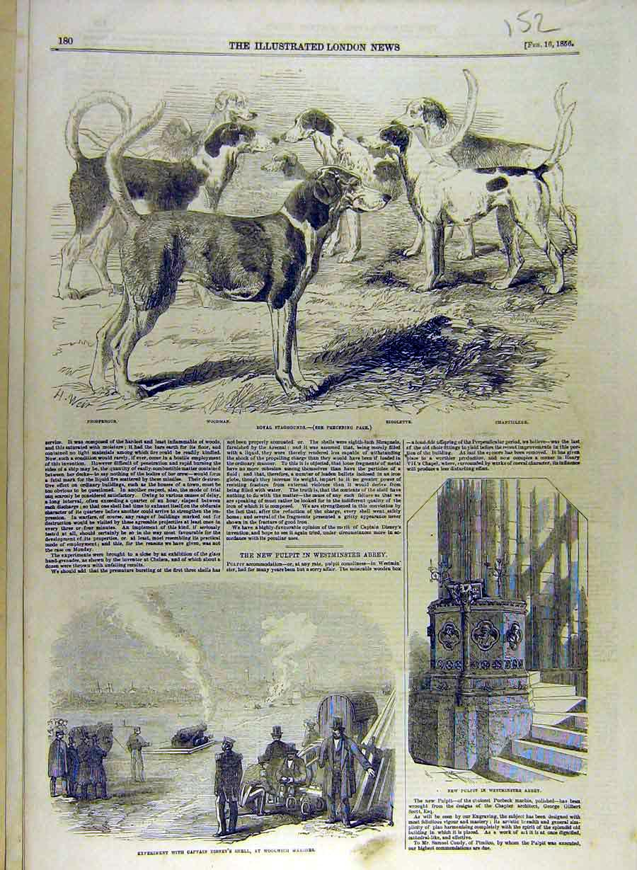 Print 1856 Royal Stag-Hounds Dogs Hunt Woolwich Disney Shell 528841 Old Original
