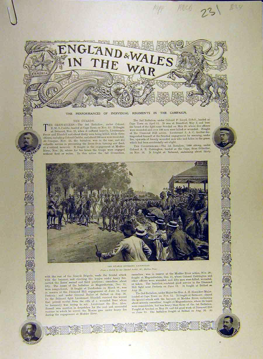 Print 1900 Africa War England Wales Transvaal Military 31A8841 Old Original