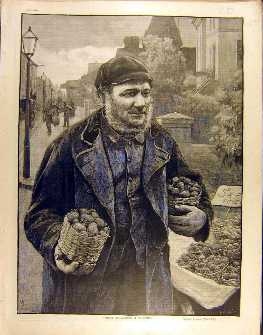 Print 1890 Fivepence Punnet Srawberry Seller White 188851 Old Original