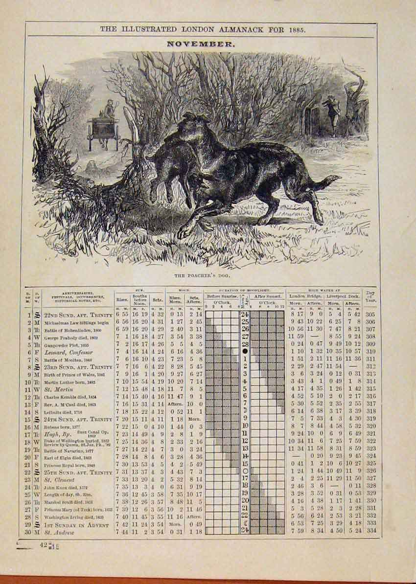 Print London Almanack Poachers Dog November 1885 188901 Old Original