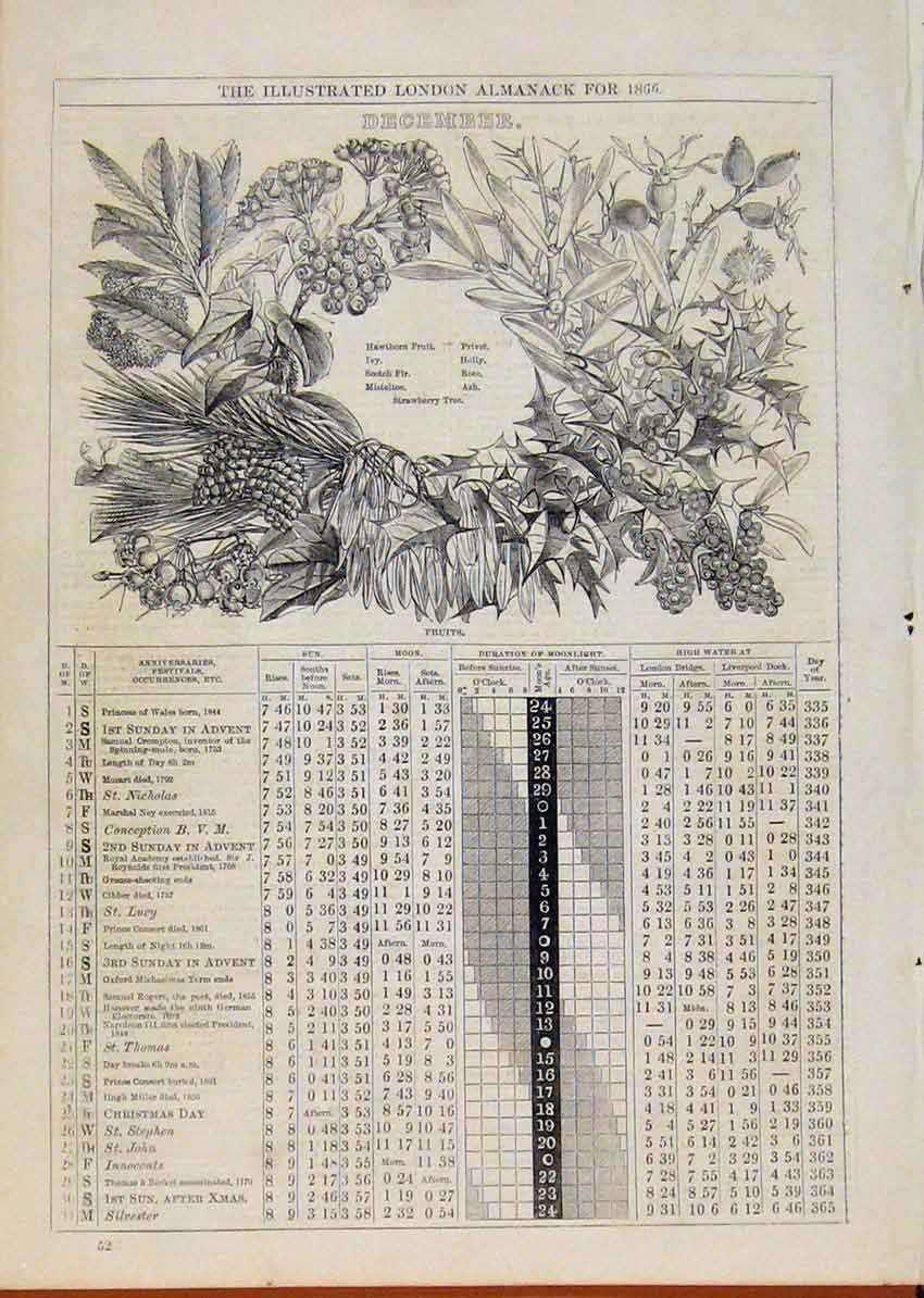 Print London Almanack December 1866 Fruits 798901 Old Original