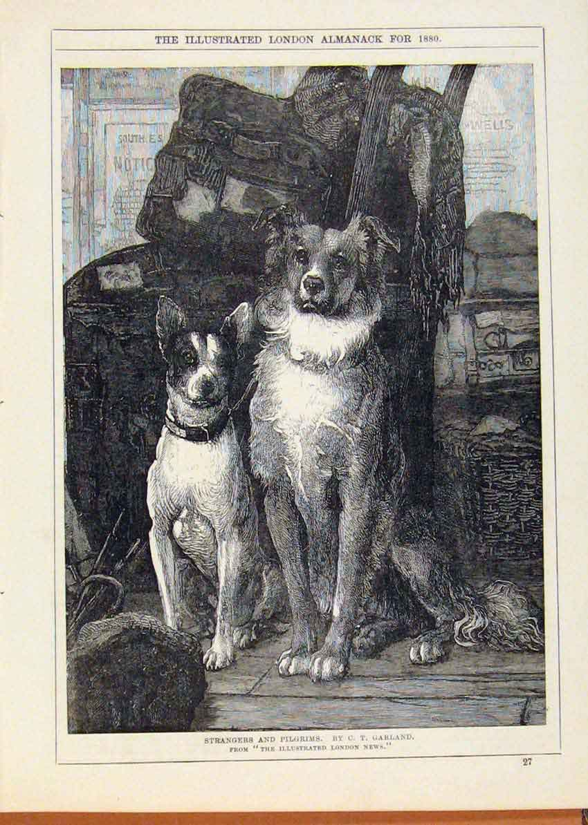 Print London Almanack 1880 Strangers & Pilgrims Dogs 318911 Old Original