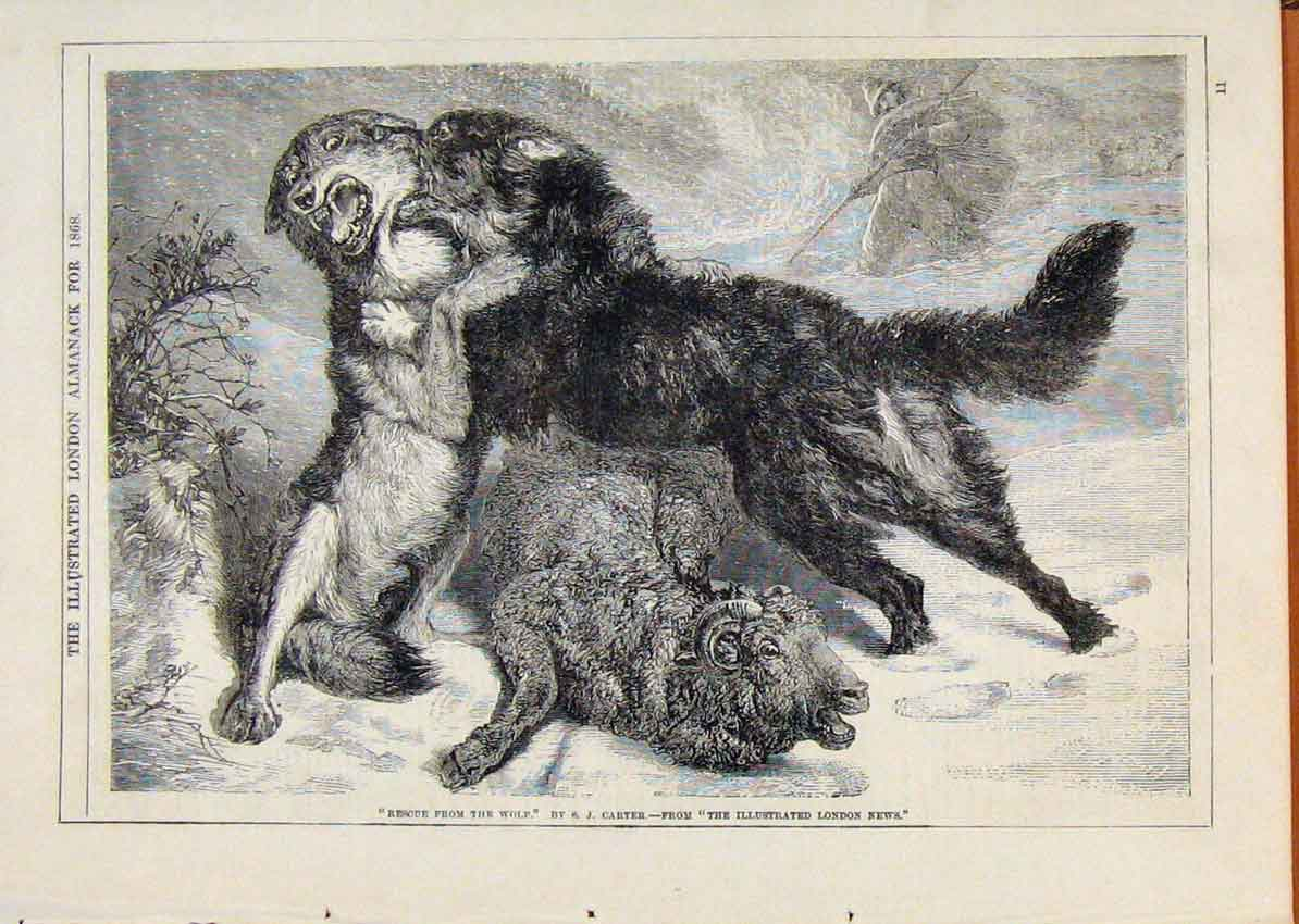 Print London Almanack Rescue From Wolf By Carter 1868 518911 Old Original