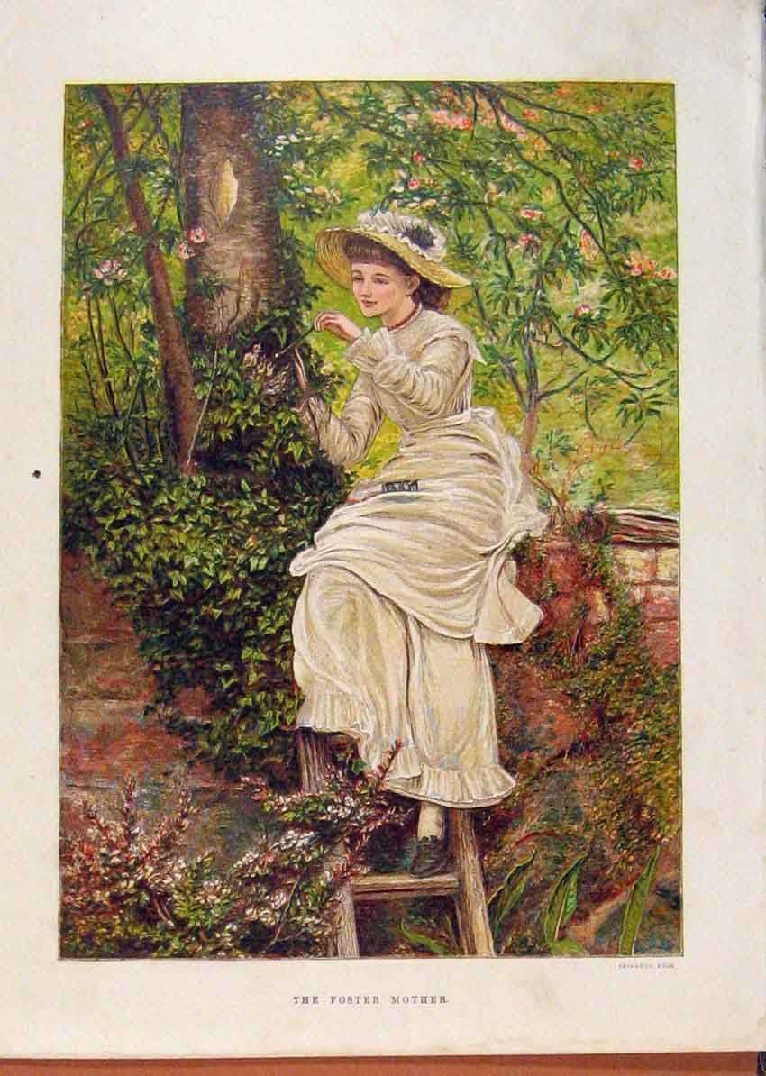 Print Illustrated London Almanack Foster Mother On Fence 558921 Old Original