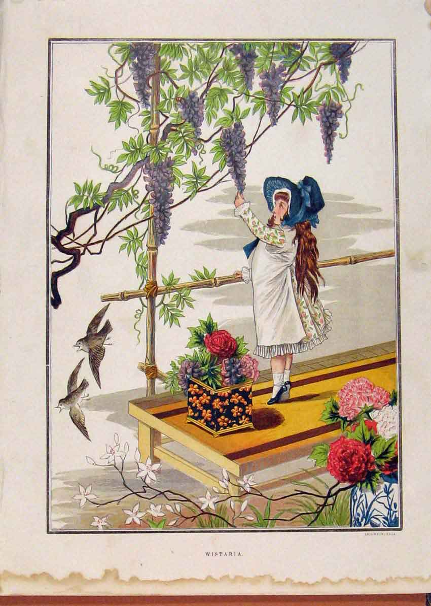 Print Illustrated London Almanack Young Child On Porch Flower 658921 Old Original
