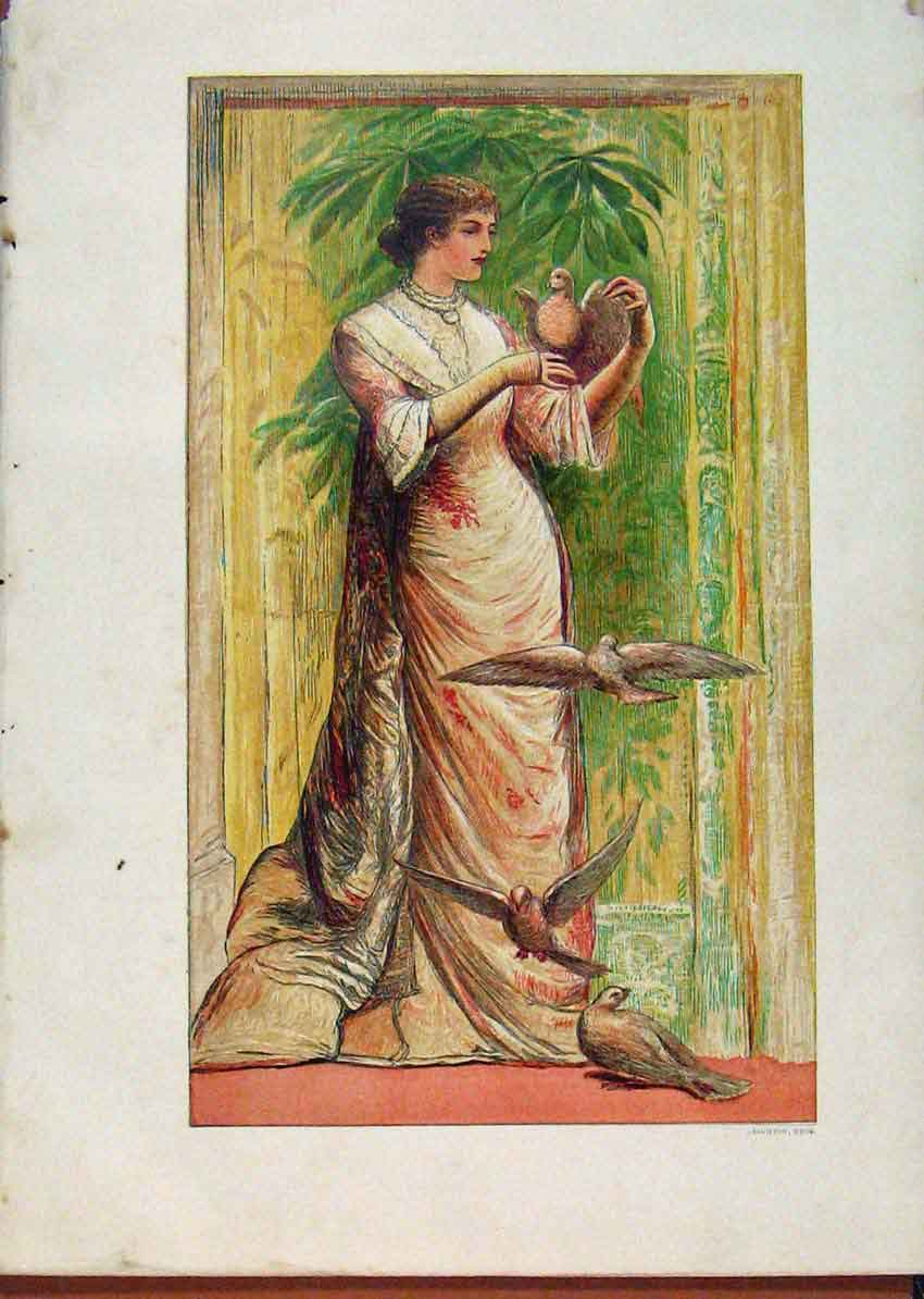 Print Illustrated London Almanack Beautiful Girl With Birds 718921 Old Original