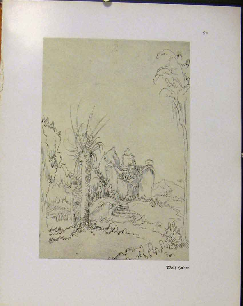 Print German Drawings Wolf Suber Landscape 368941 Old Original