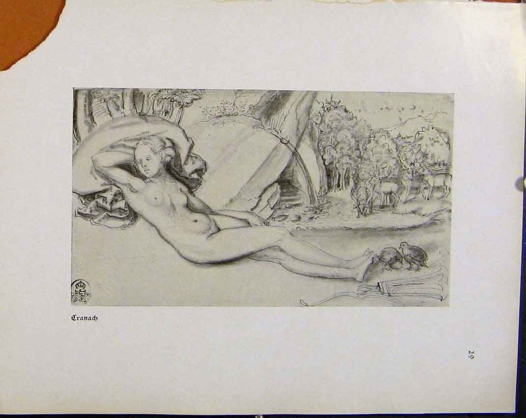 Print German Drawings Sketch Lady Naked Lady By Rock 918941 Old Original