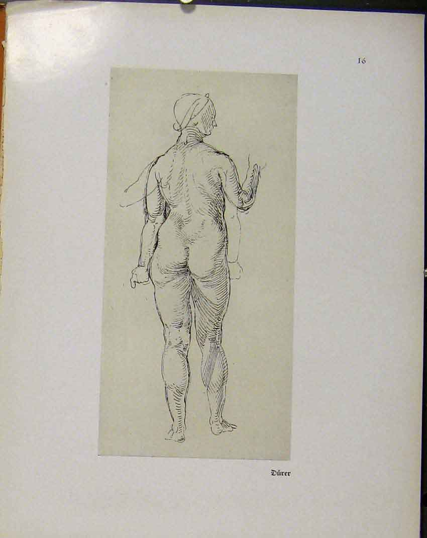 Print German Drawings Sketch Woman Naked C1923 038941 Old Original