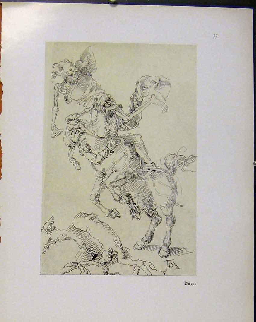 Print German Drawings Durer Horse Bucking And Playing Up 078941 Old Original
