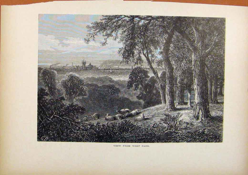 Print Picturesque America View From West Park Wood Engraving 078961 Old Original