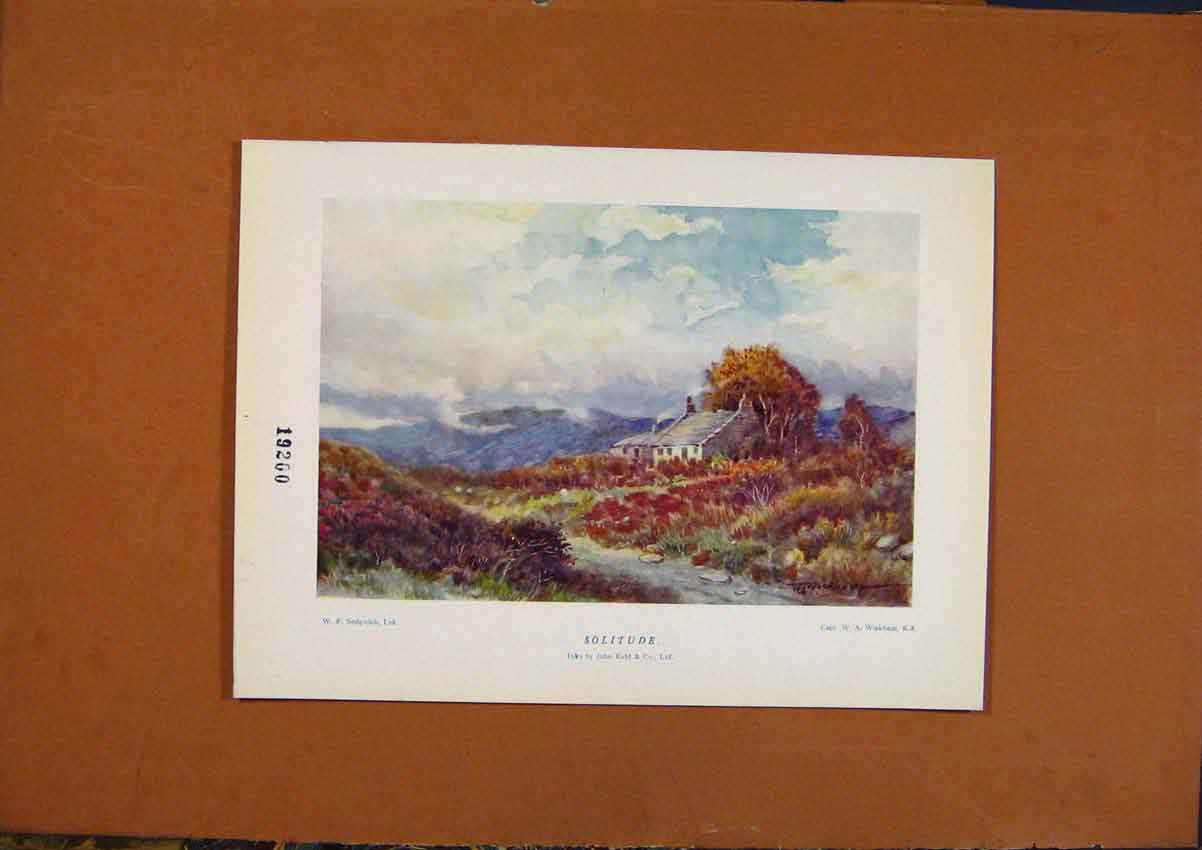 Print C1880-1924 Solitude By Wickham Color Art 228981 Old Original
