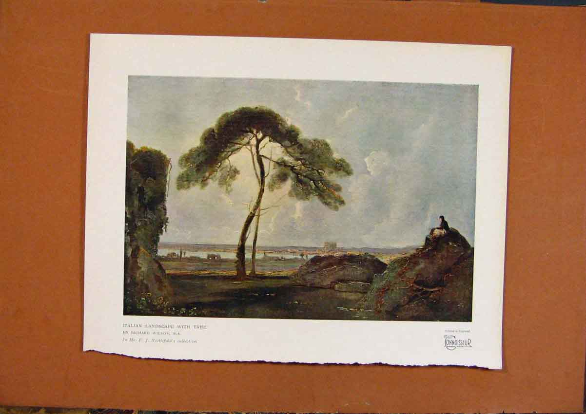 Print Connoisseur 1902-1909 Italian Landscape With Tree Color 798991 Old Original