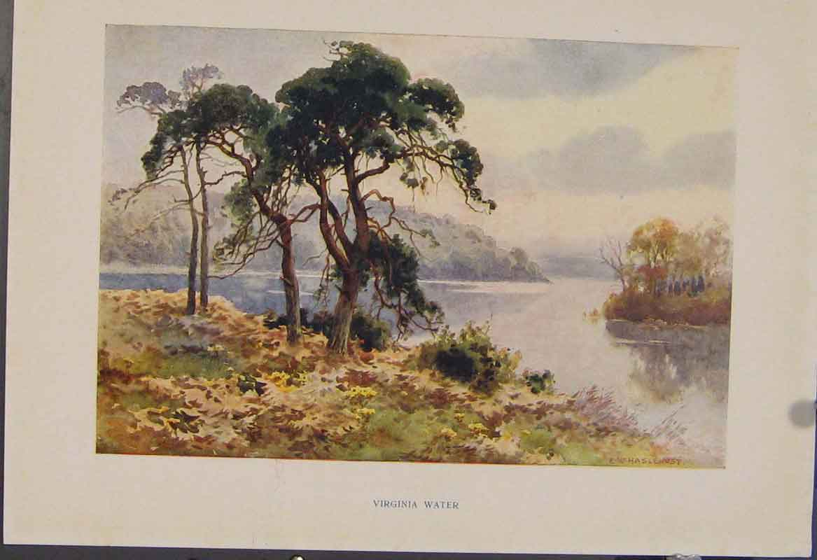 Print Painting By Haslehust Virginia Water English Country 579331 Old Original