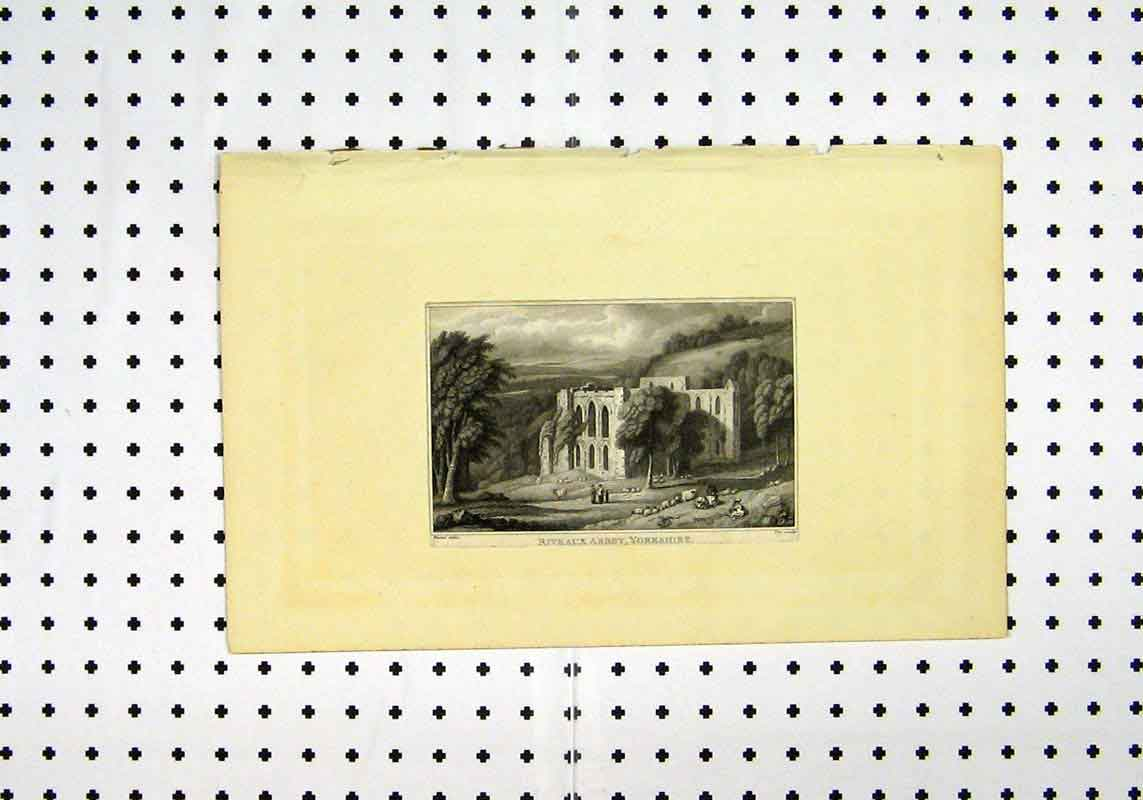 Print C1836 View Riveaux Abbey Yorkshire Country Scene 142A106 Old Original