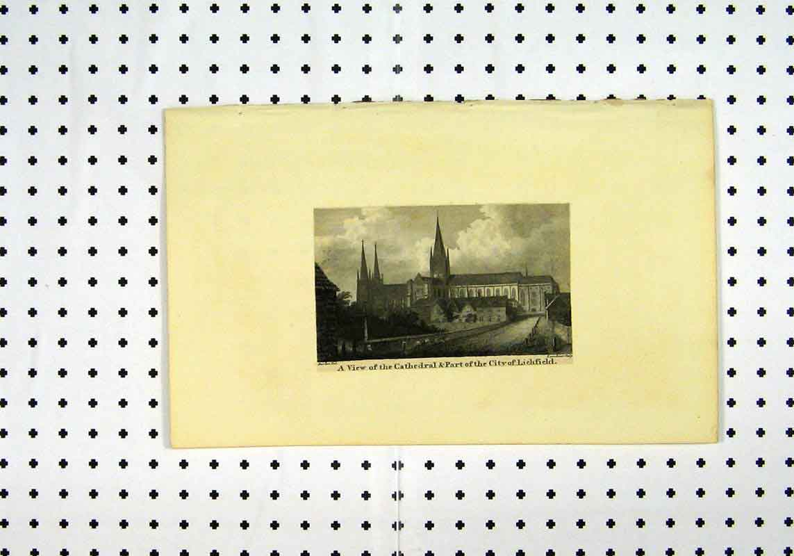 Print C1836 View Cathedral City Lichfield 146A106 Old Original