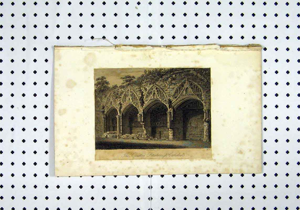 Print C1836 View Cloisters Peterborough Cathedral 198A106 Old Original