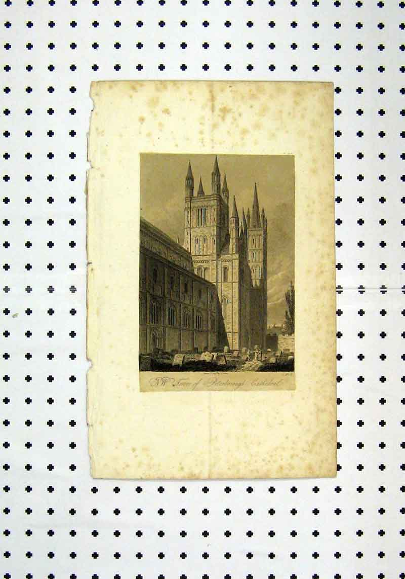 Print View Tower Peterborough Cathedral C1836 204A106 Old Original
