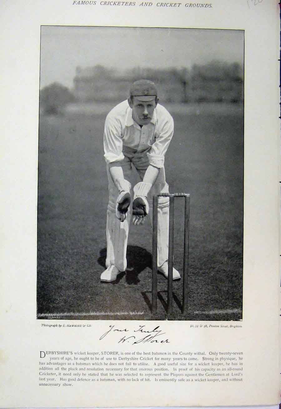 [Print 1895 Cricket Photograph Storer Peate Bowler Wicket 120A110 Old Original]