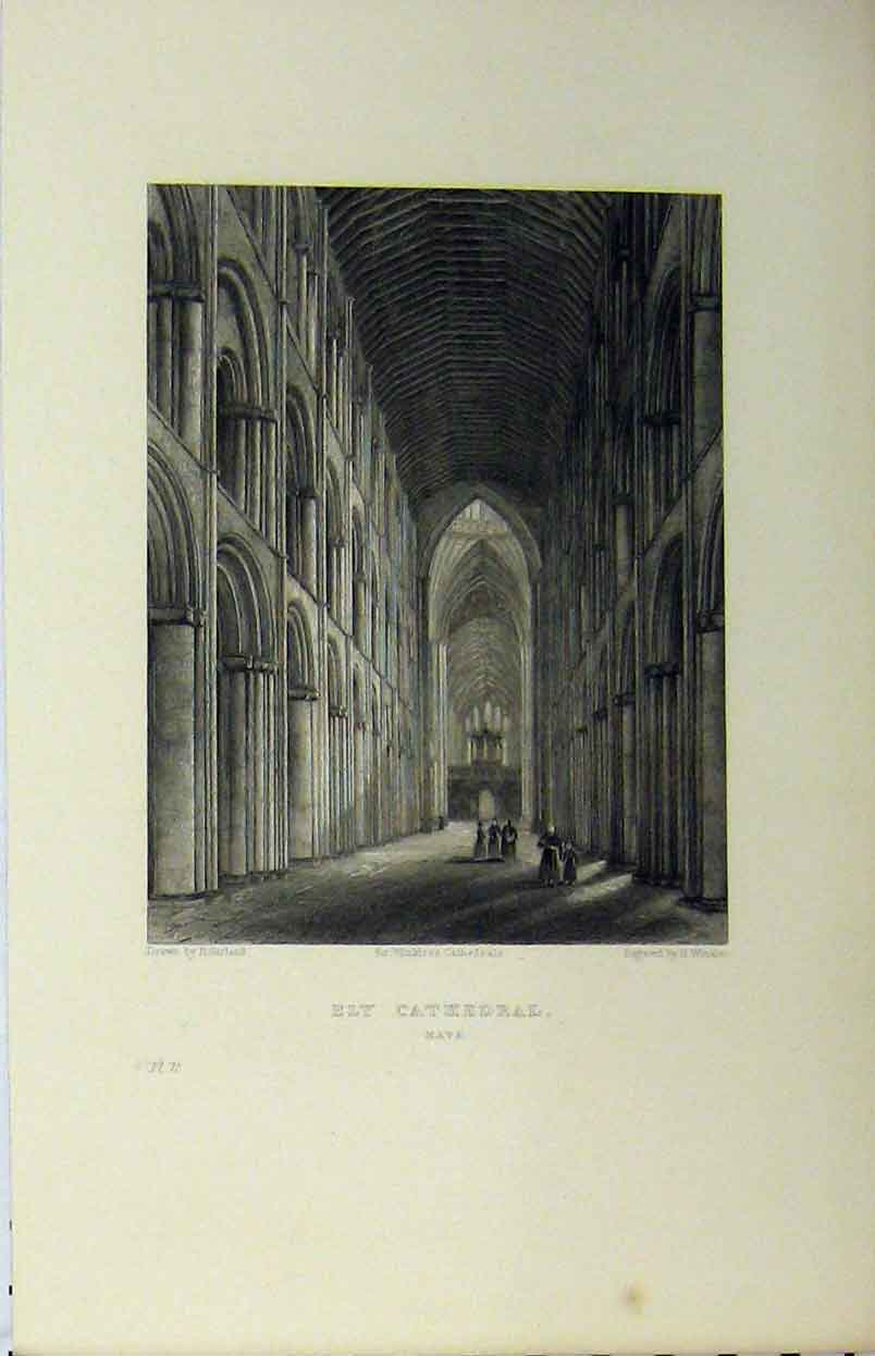 Print C1850 Ely Cathedral Nave Winkles Garland 134A112 Old Original