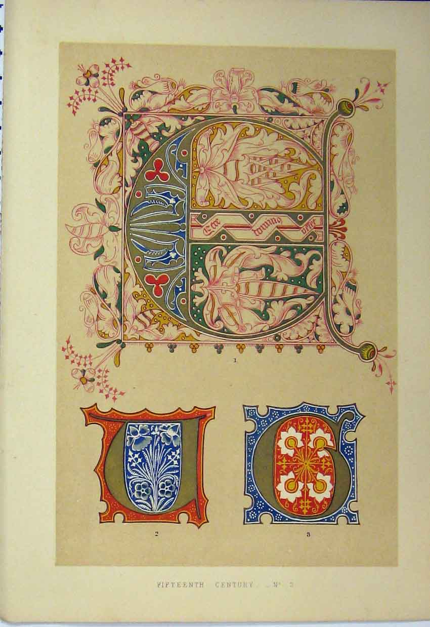 Print C1882 Fifteenth Century Calligraphy Design Colour 124A113 Old Original