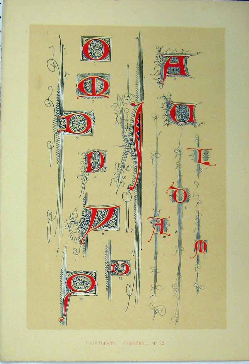 Print Fourteenth Century C1882 Calligraphy Letters Colour 176A113 Old Original