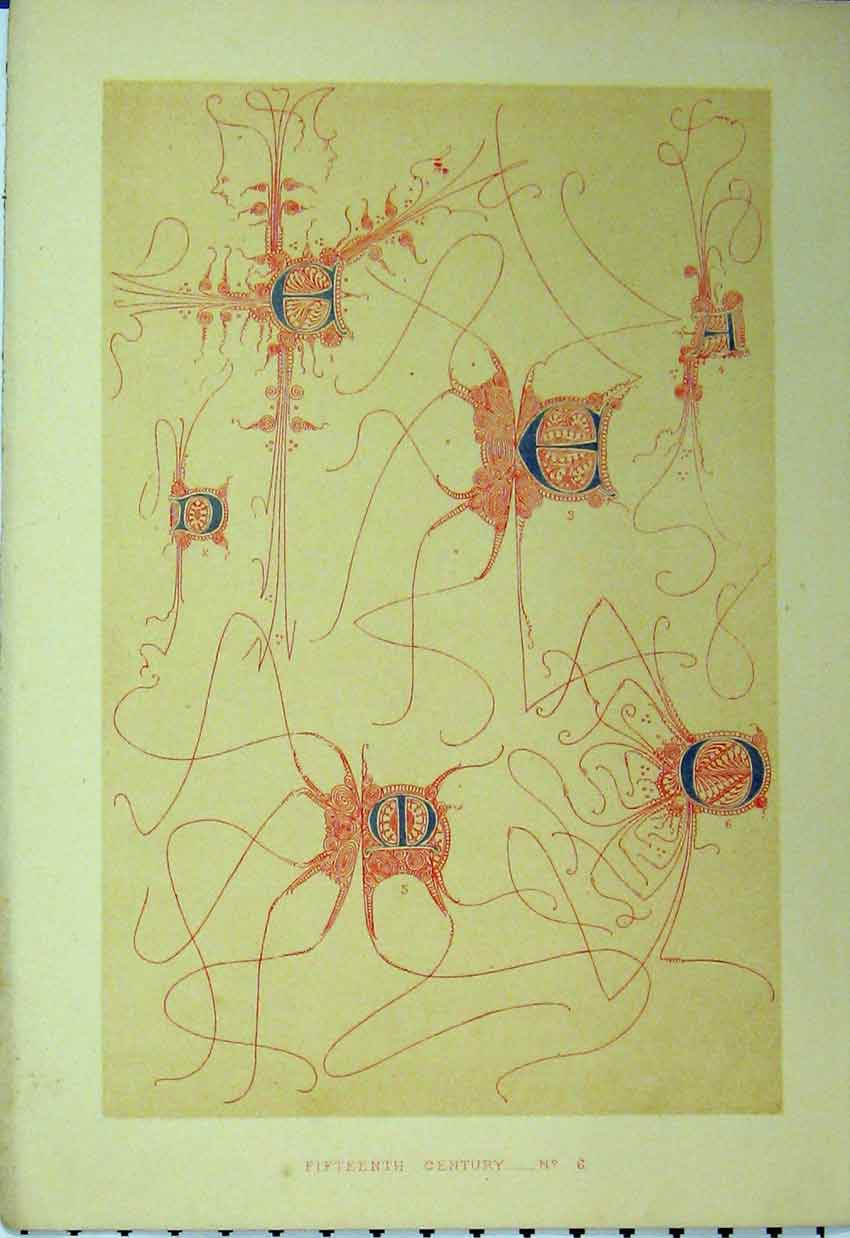 Print Calligraphy C1882 Fifteenth Century Design Colour 179A113 Old Original
