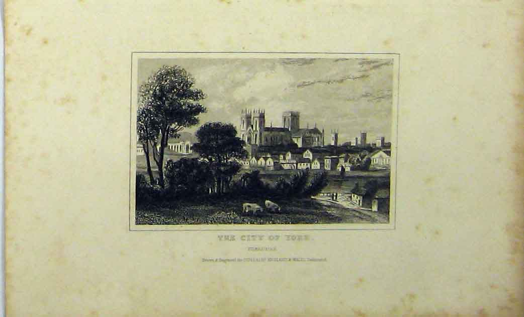 Print View City York Yorkshire C1848 Country Scene Dugdales 136A114 Old Original