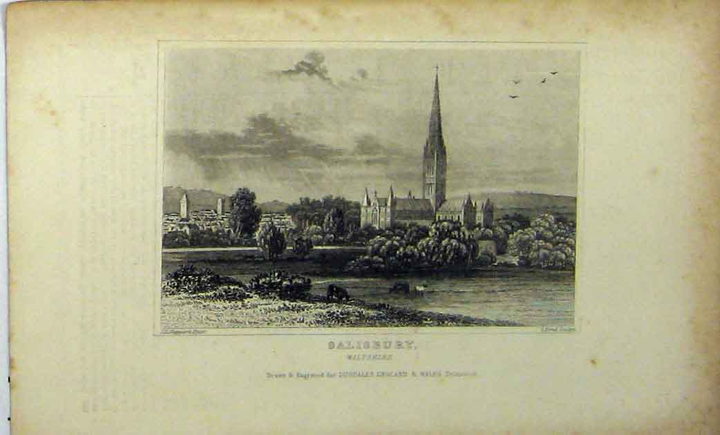 Print View Salisbury Wiltshire C1848 Country Scene Dugdales 199A114 Old Original