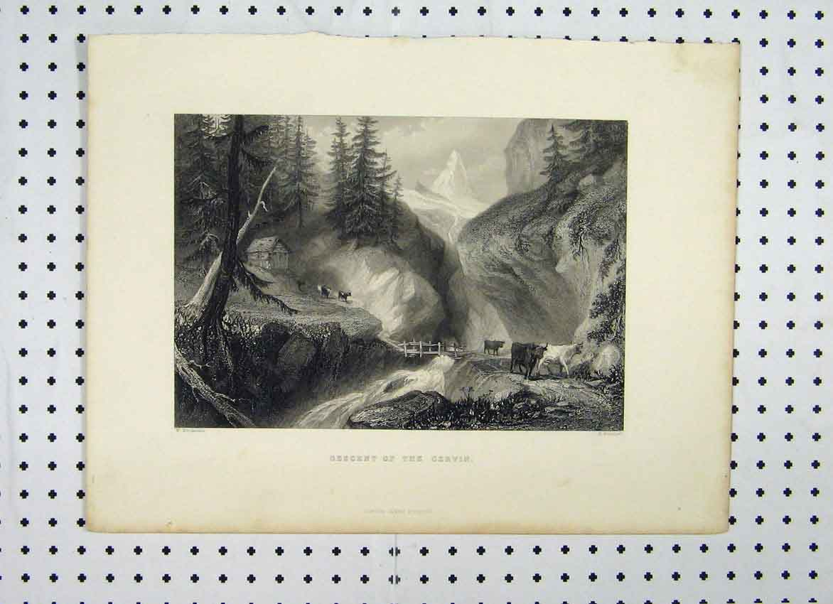 Print View Descent Gervin C1865 Cattle Mountains Scene 121A115 Old Original