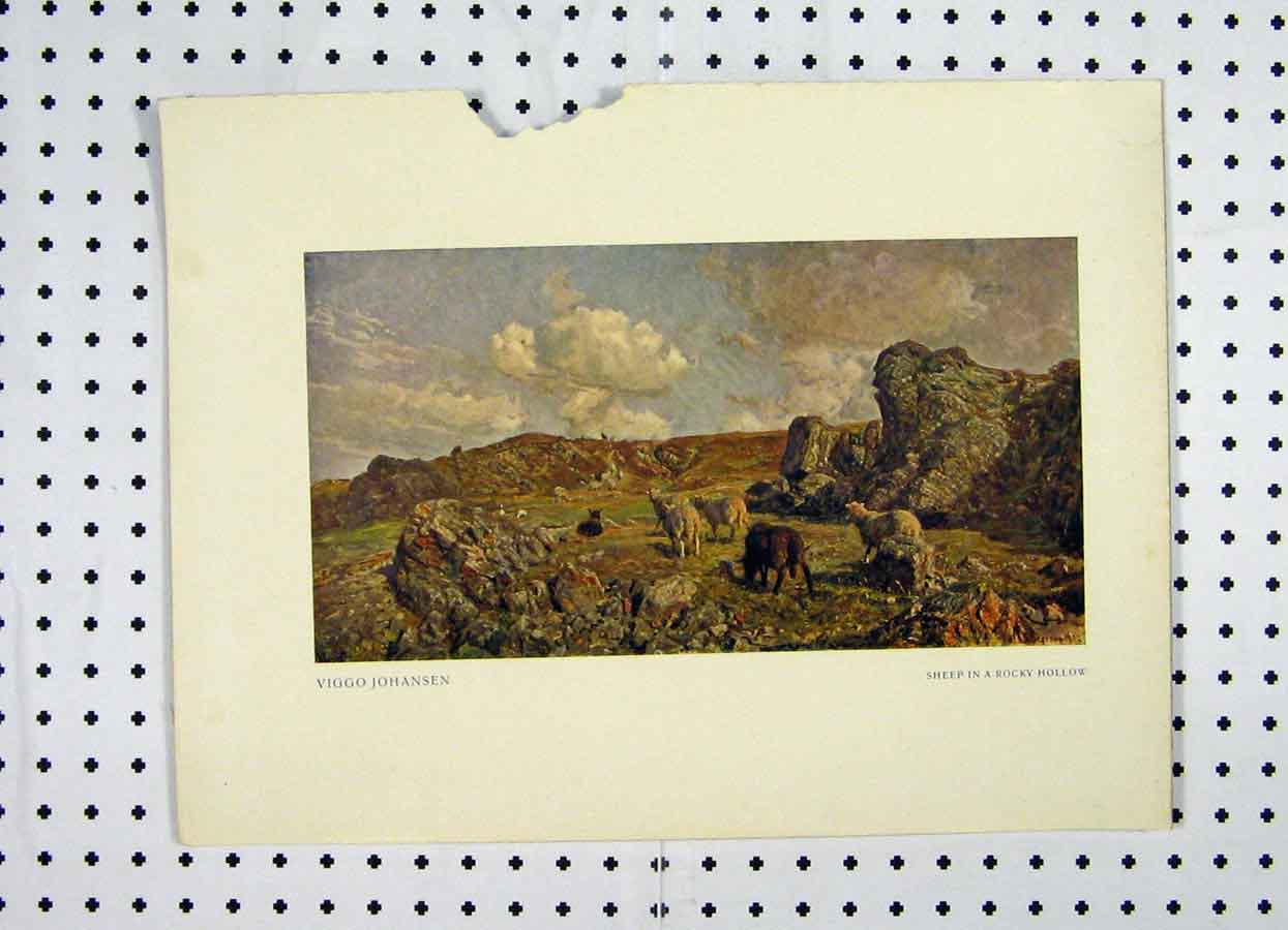 Print Colour Country Scene Sheep Rocky Hollow 105A119 Old Original