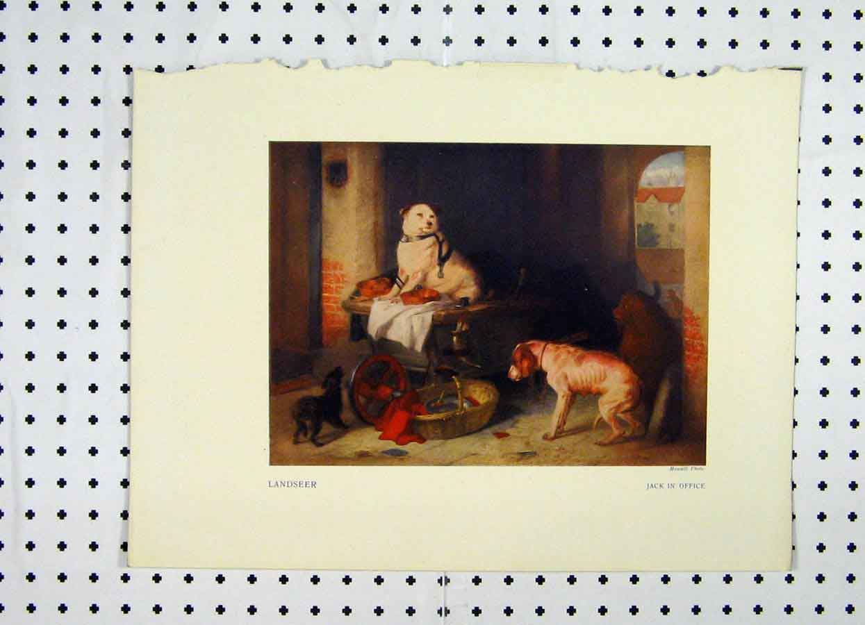 [Print Colour Dogs Playing Basket Trailer Landseer 214A119 Old Original]