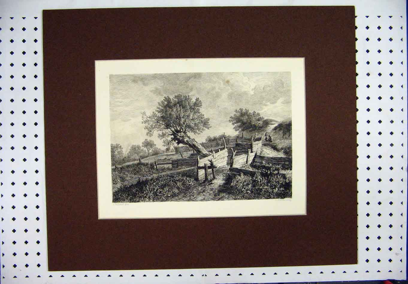 Print C1880 Country Scene Trees Fences Fischer 340A126 Old Original