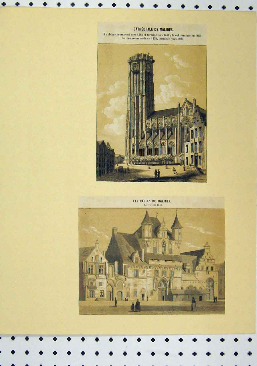 Print C1850 Sepia Cathedral Hall Buildings 113A145 Old Original