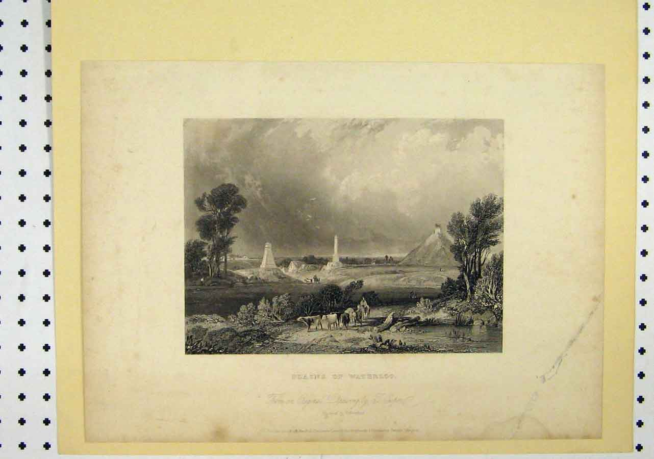 Print C1850 View Plains Waterloo Cows Trees Country Scene 116A145 Old Original