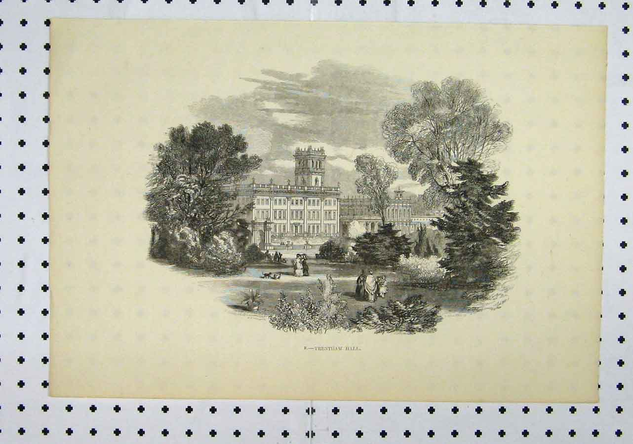 Print View Trentham Hall Country Scene Building Garden Tree 125A145 Old Original