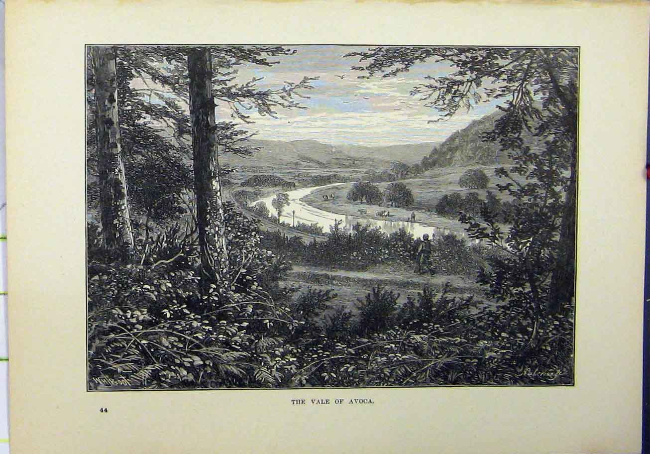 Print 1898 View Vale Avoca Country Scene River Trees 228A193 Old Original